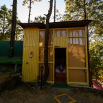 gallery-tree-house-2