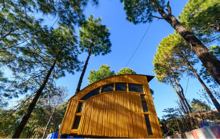 gallery-tree-house-4