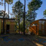 gallery-tree-house-6