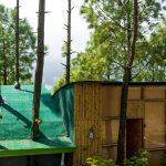 gallery-tree-house-9